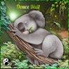 Giff Picmix Un koala