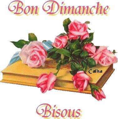 Bon Dimanche à vous tous :-)