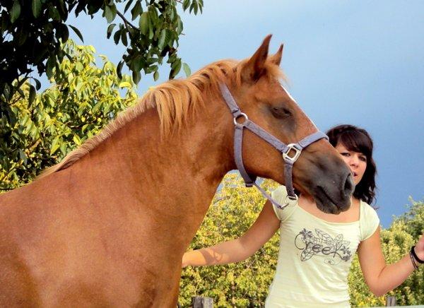 Merci mon gros poney roux ... <3