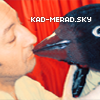 Photo de kad-merad