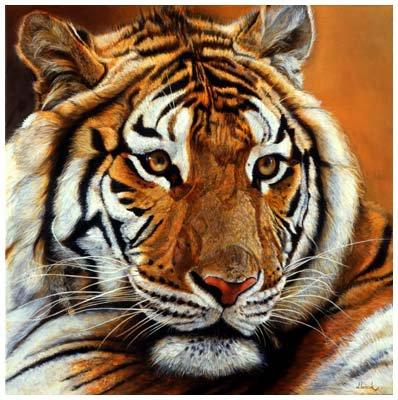 Tigre brun
