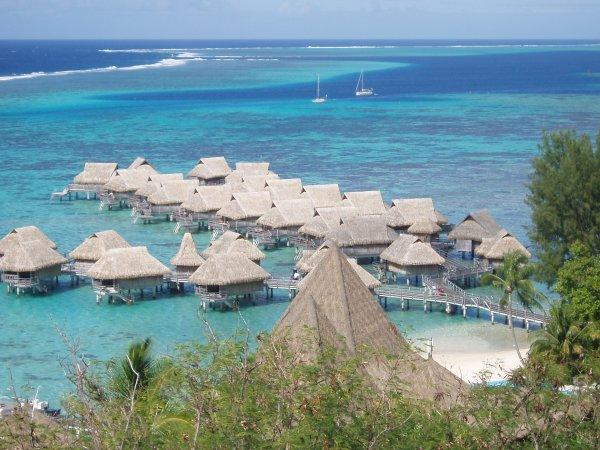 jolie vue de Mooréa (Polynésie française)