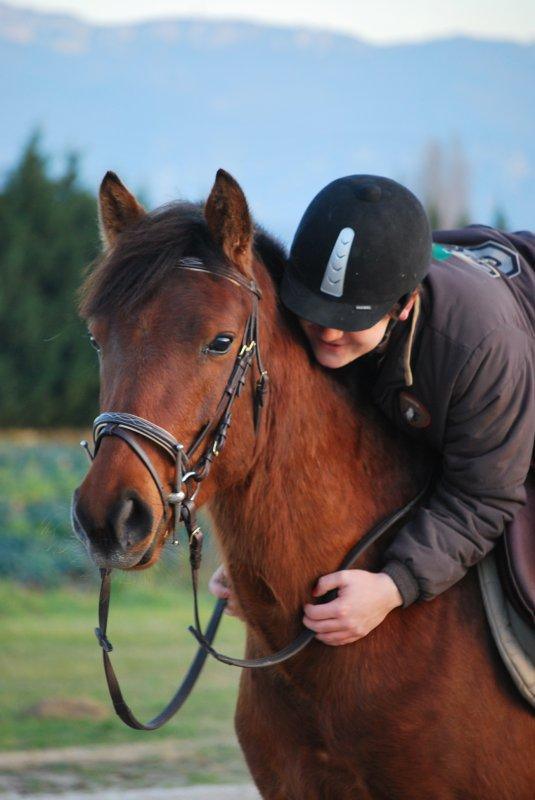 « Le cheval comprend plus facilement l'homme que l'homme ne comprend le cheval. On peut donc se demander si le cheval n'est pas largement supérieur à l'homme. »