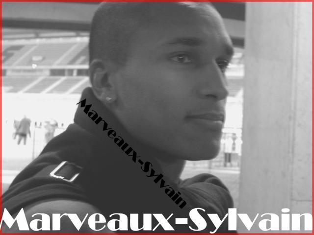 _ Sylvain Marveaux.