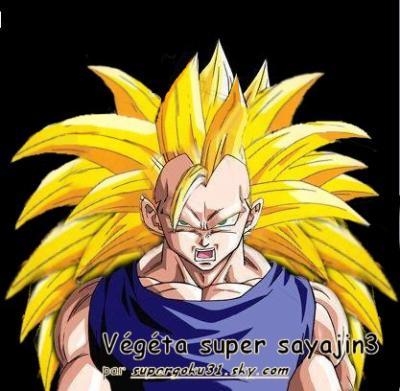 Vegeta en super sayen 3 pour fusionner avec sangohan ssj3 - Sangohan ado super sayen 3 ...