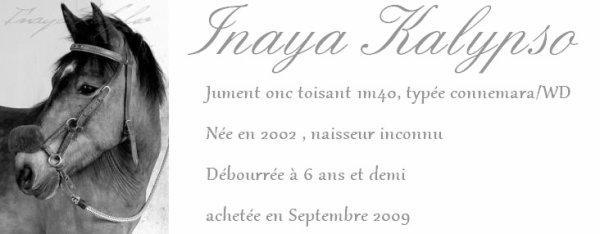 Présentation d'Inaya et de Miss