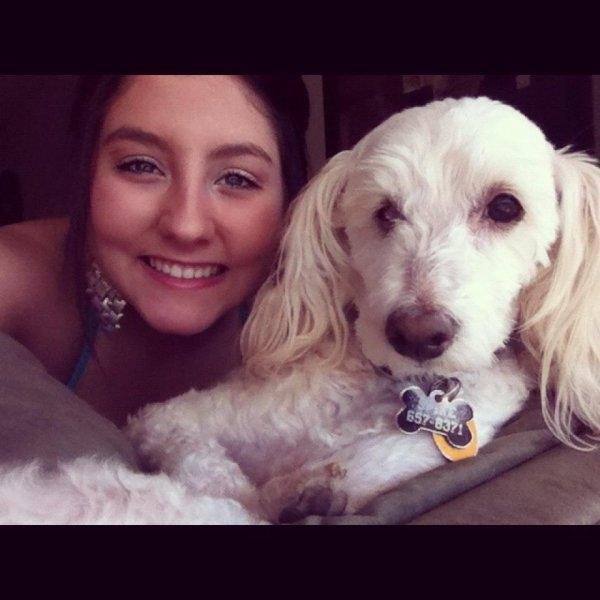 my doggys <3