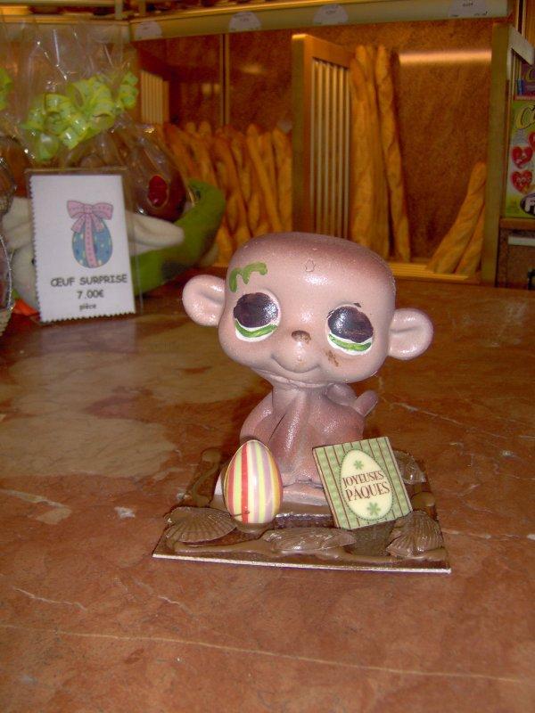 Pet shop singe aux d lices du palais - Petshop singe ...