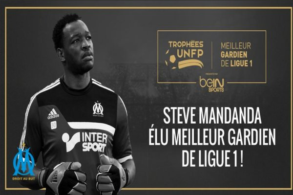Meilleur gardien de Ligue 1 2014-2015