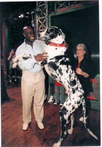 le chien le plus grands du monde