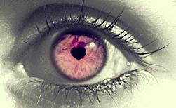 « L'oeil ne voit rien si l'esprit est distrait. »