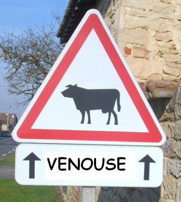direction VENOUSE