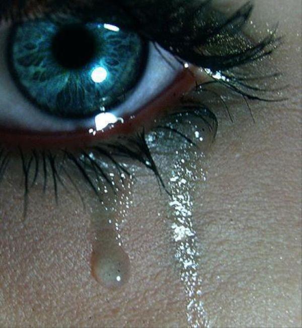 Mon oeil .