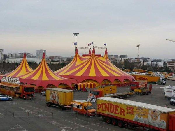 Le cirque PINDER à Toulouse. Photos fcbk cirque PINDER
