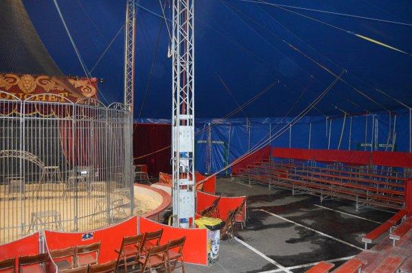 Le magnifique cirque Nicolas ZAVATTA de la famille DOUCHET actuellement à CHOLET sur le parking du CARREFOUR