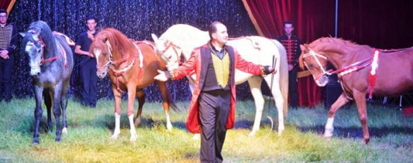 """Le cirque Nicolas ZAVATTA DOUCHET Chateaubriant juin 2019. Quelques photos du nouveau spectacle """"Aladin"""""""