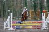 Concours de saut d'obstacles avec Tim <3