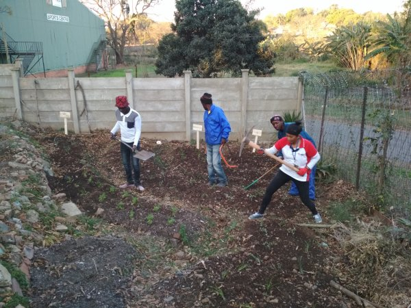 Garden project with the Youth living in the street in Pietermariztburg
