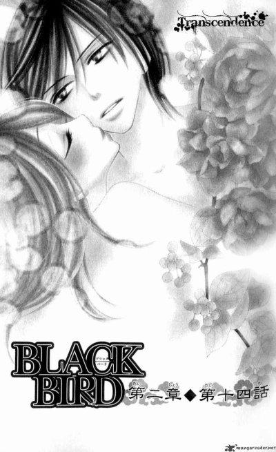 Black Bird ♥♥