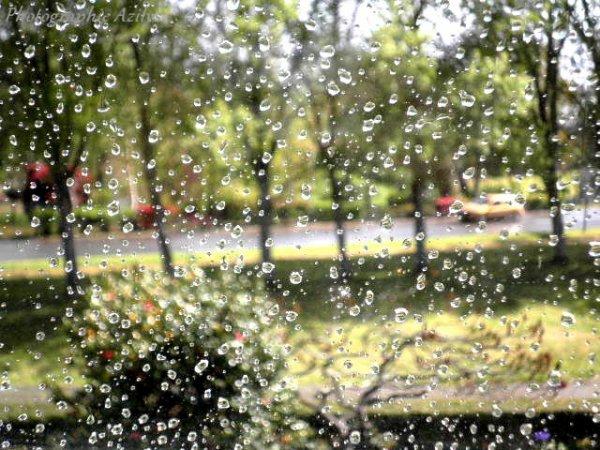 """"""" La pluie """""""