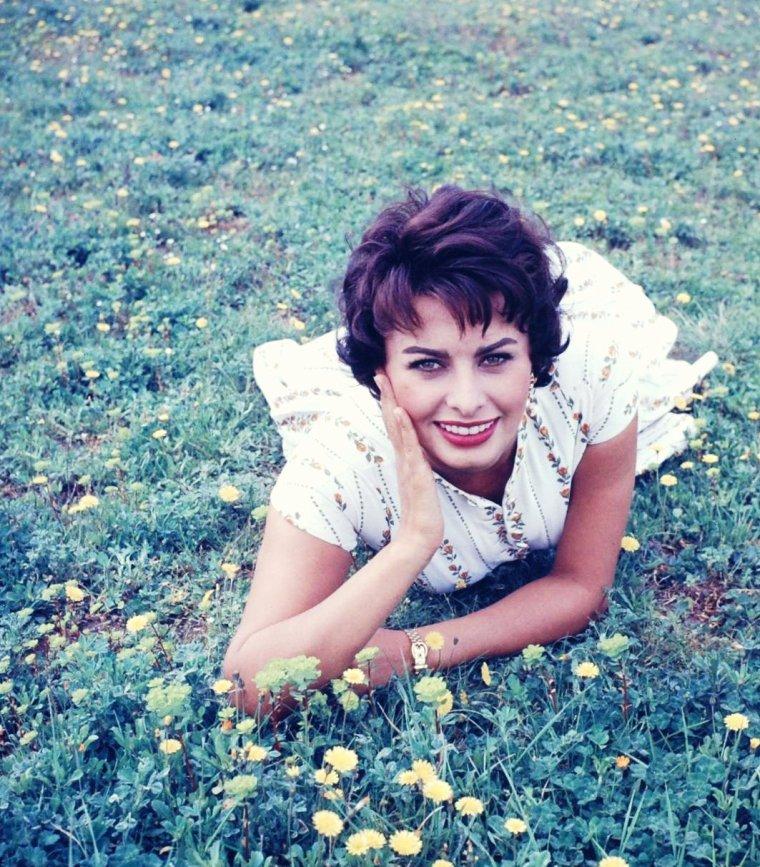 Sophia LOREN en 1957 vue par Loomis DEAN.