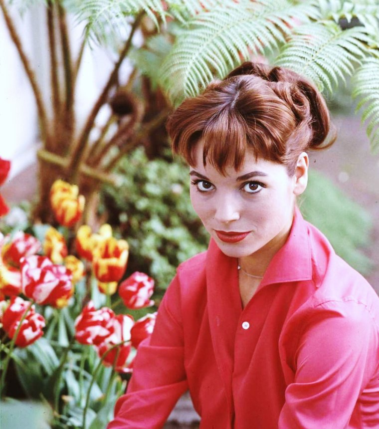 Elsa MARTINELLI par Ralph CRANE en 1960.
