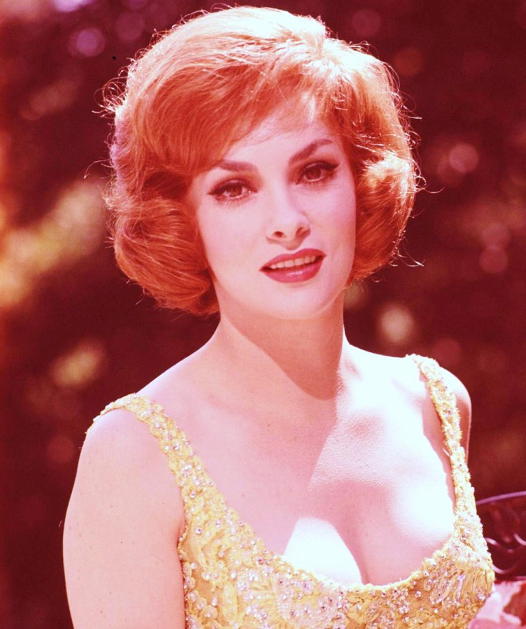 Gina LOLLOBRIGIDA vue par Peter STACKPOLE en 1961-62, notamment avec son fils Milko Jr.
