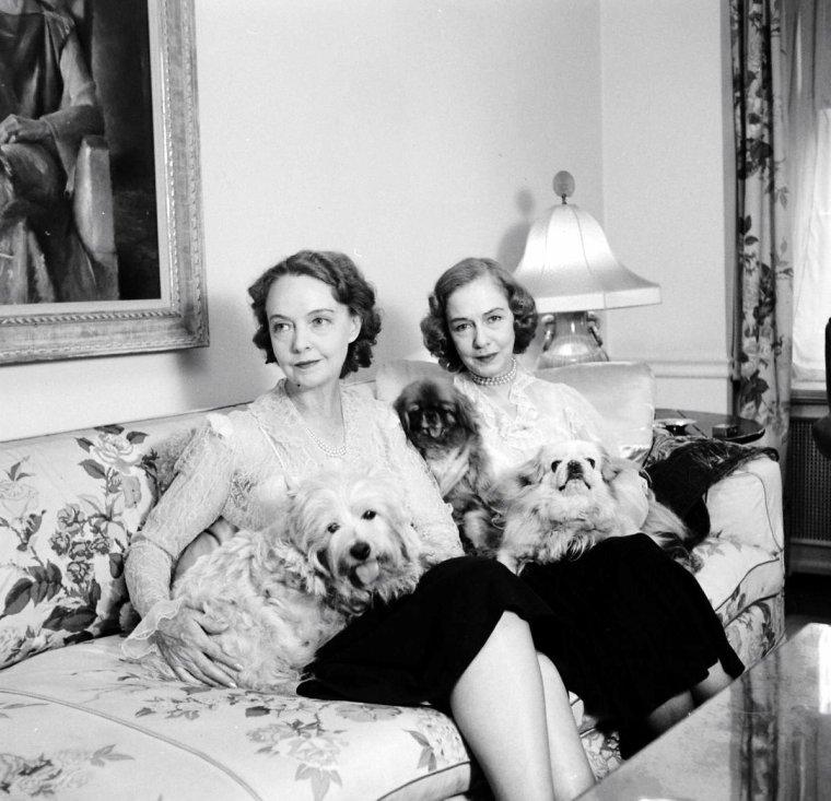 Deux soeurs, Lillian et Dorothy GISH prennent le thé sous l'oeil de Nina LEEN en Mars 1951.