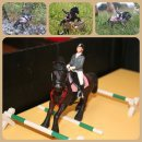 Cisco de la Plaine et pour le photo show de schleich---photo-show