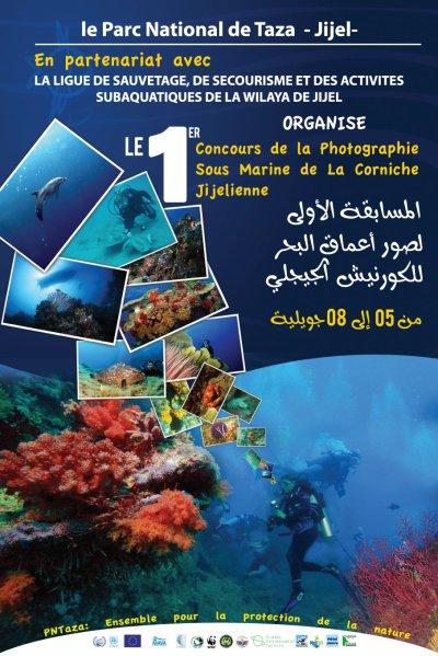 1er Concours de la Photographie sous-marine de la Corniche jijelienne