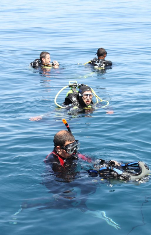 Photos du 1er Concours de la Photographie sous-marine de la Corniche jijelienne