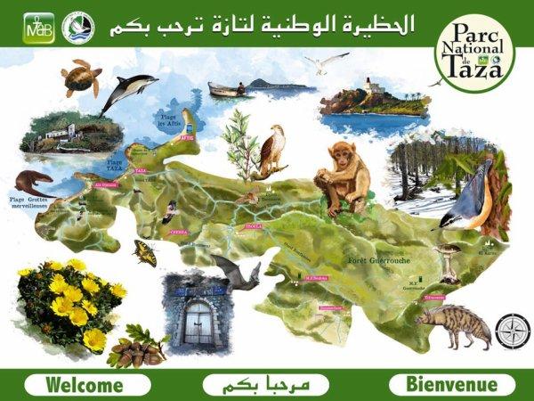 Parc National de TAZA - Jijel