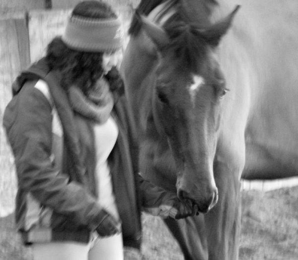 """""""Apprenez à écouter ce que votre cheval murmure à votre oreille."""""""