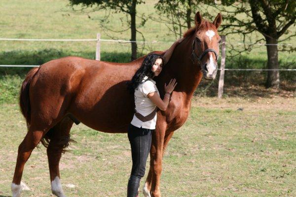 """""""Aimer un cheval pour son âme et pour son coeur et non pour sa force et son travail."""""""
