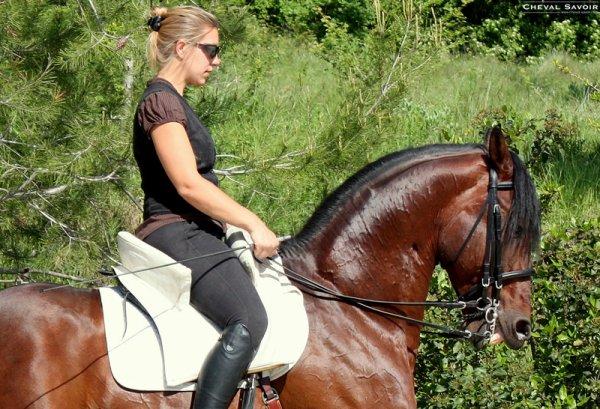 Isa écrit pour cheval savoir...