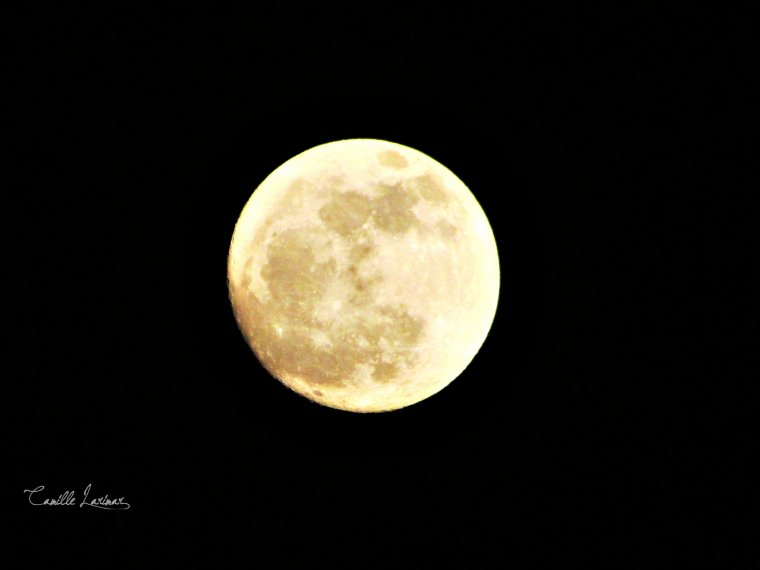 « Moonlight. »