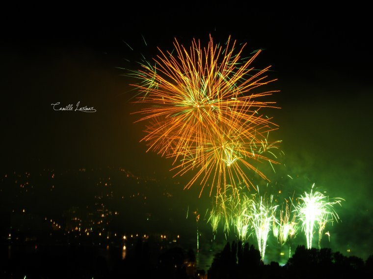 « Firework's colors. »