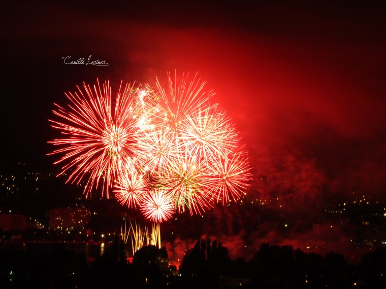« Firework's colors. » II