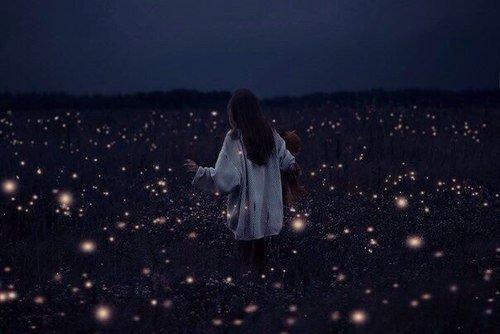• The sky is full of stars •