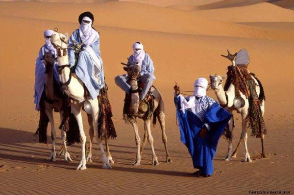 partager le desert avec nous