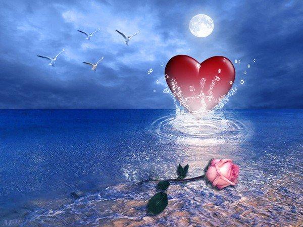 bonsoir a vous mes amies je vous envoie toute mon amitier et vous souhaite une bonne soiree suivi dune belle nuit bissous a vous alain  a demain