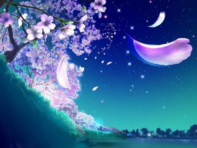 une fleur qui jaillit du sol avec une beaute resplendissante de toute sorte  de couleur d\u0027aspect different , une petale de rose qui vole dans le ciel  bleu