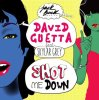 David Guetta feat Skylar Grey - Shot Me Down