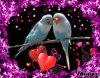 sa pour tout les amoureu