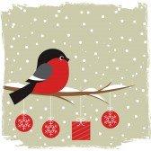 Zalige kerst en een gelukkig nieuwjaar  iedereen! Joyeux Noël et Bonne Année tout le monde!