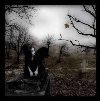 La mort. Que ce mot, si court, est insondable et terrible ! :: Maupassant.
