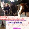 je vous aimes les filles et les chevaux