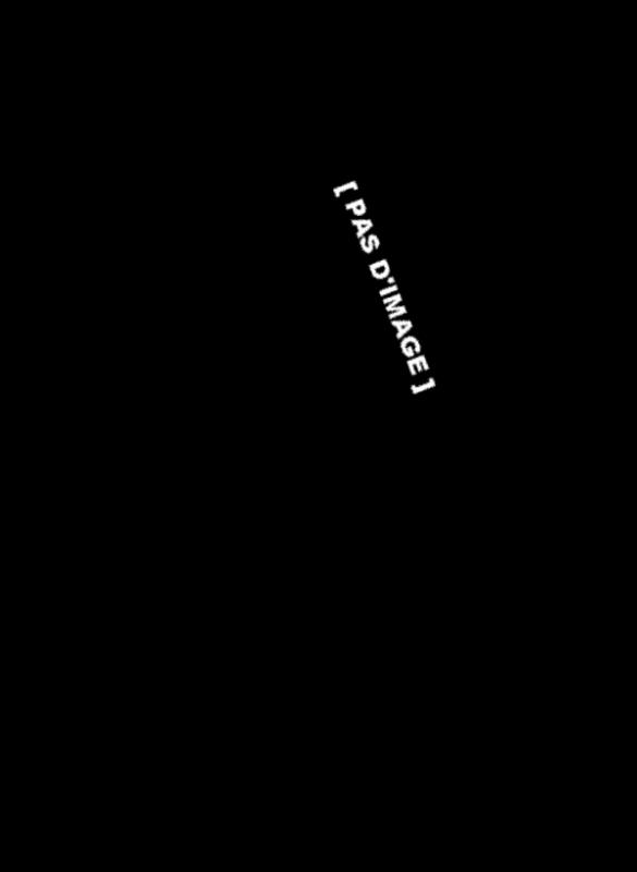 Jouet ptéranodon