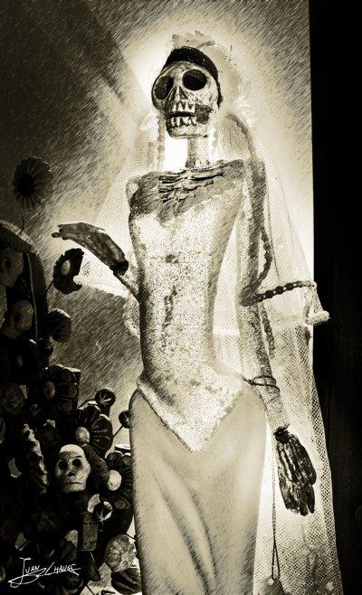 de los misterios sin resolver  de los expedientes secretos de la ciencia de la vida para la cuual  no hay metodo inductivo  sino mas deductivo todo se resume  a  vivir  para  vivir  tu decides ke haras.