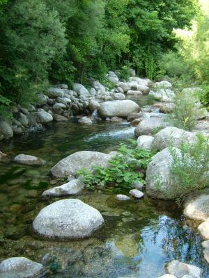 Mon coin de rivière